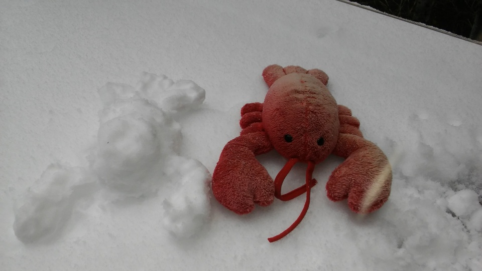 Travel Hippo and snow lobster